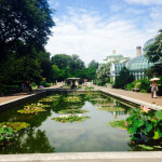 NYC Guide: Brooklyn Botanic Garden