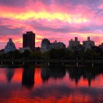 NYC Guide: Central Park