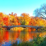 NYC Guide: Fall in Central Park